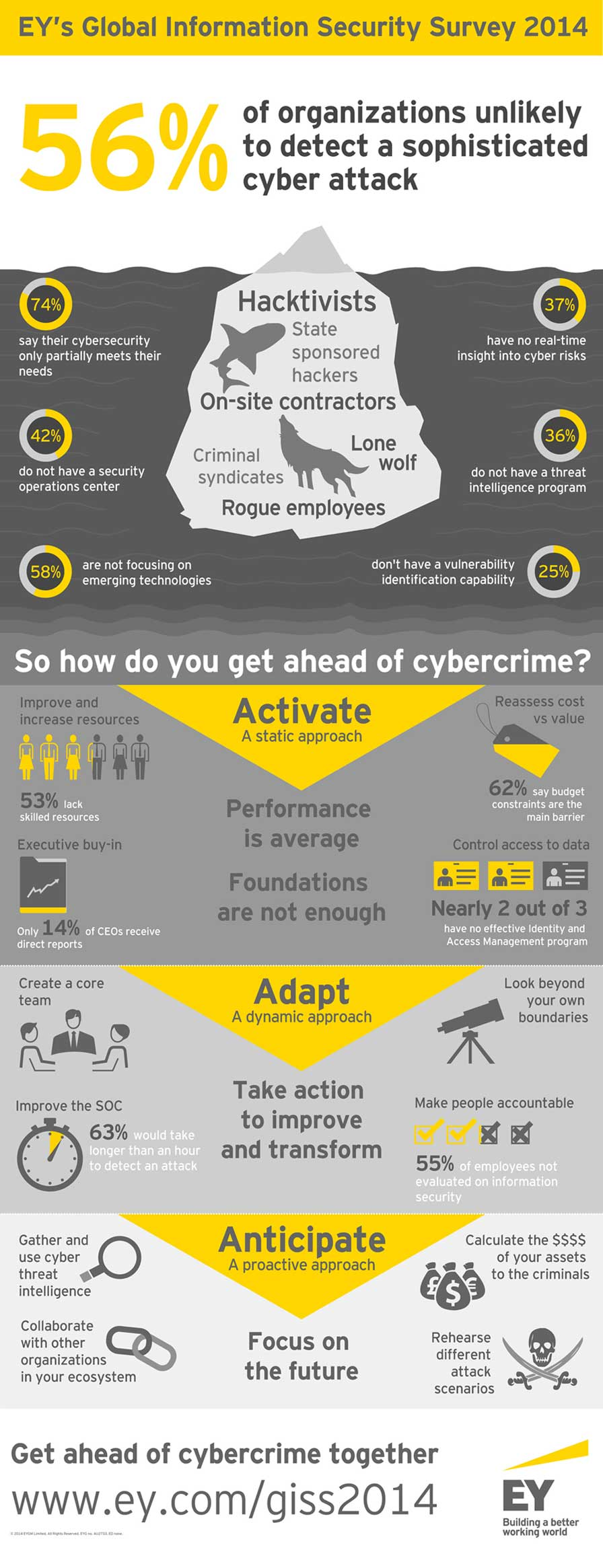ey-giss-2014-infographic